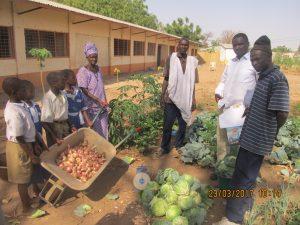 Orto mensa scolastica Ballaghar (Gambia)